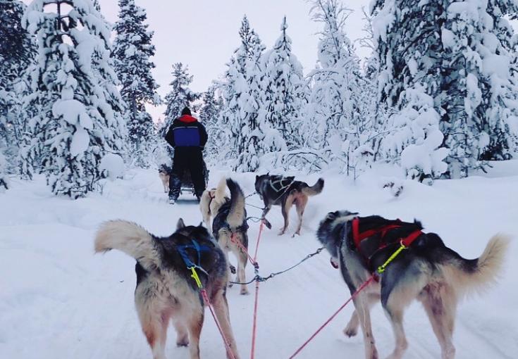 Lapland travel diary